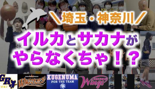 埼玉神奈川4校コラボ!『イルカとサカナがやらなくちゃ』